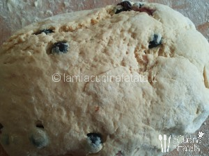 colomba biscotti 008